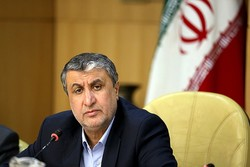 No accumulated losses for Iran Air in present year: Road min.