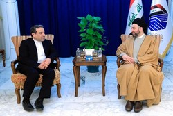 Araghchi, Hakim confer on regional developments