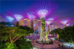 بهترین دانشگاه های منطقه آسیا و اقیانوسیه در ۲۰۱۹ معرفی شدند