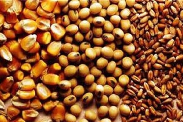 $2.6bn worth of livestock raw materials imported in 10 months