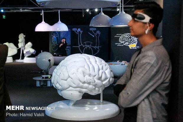 سرنخ های جدید در مورد کاهش عملکرد شناختی مغز