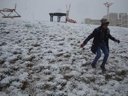 """يوم ثلجي على جبل """"الشتر"""" غرب إيران /فيديو"""