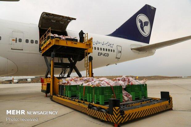 واردات ۱۲۸۰ تن گوشت گرم به البرز/ کشف دو محموله قاچاق دام
