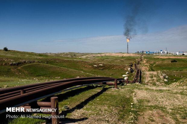 خطوط لوله های انتقال نفت به سمت شرکت پتروشیمی زیلائی در حومه روستای هفت شهیدان کشیده شده است. در حالیکه فلر روشن بزرگی در امتداد آنها دیده می شود.