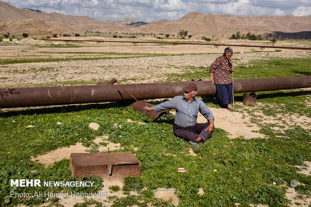 رضاقلی چهرازی 80 ساله، در حالیکه با چوب دستی اش لوله انتقال گاز را نشان می دهد در باره مشکلات بیشمارمنطقه علیرغم وجود منابع نفت و گاز صحبت می کند. او با همسرش پروانه قیصری، که 50 سال دارد در حال استراحت در اطراف روستای گزین در حومه نفت سفید هستند. شغل آنها دامداری و کشاورزی است.