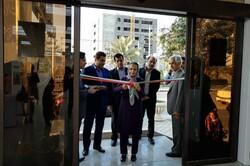 نمایشگاه ملی آثار تجسمی «قلم مهتاب» در بوشهر افتتاح شد