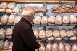 ۶۰ تن گوشت مرغ در بازار زنجان توزیع می شود