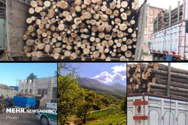 ۲۵ تن چوب قاچاق در قروه کشف شد/تشکیل ۷۷ پرونده تخریب اراضی