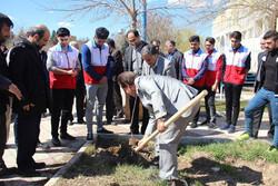 مراسم «بنشانیم درخت» در قزوین برگزار شد