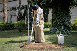 قائد الثورة الاسلامية يؤكد على منع قطع الاشجار ومسؤولية الأجهزة المعنية بهذا الشأن