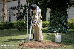 Leader plants trees on national tree planting day