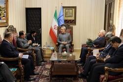 Tehran, Tokyo discuss organizing cultural events