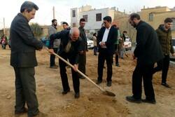 آئین درختکاری در شهرک همت شاهرود برگزار شد