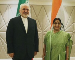 Iranian, Indian FMs confer on regional issues