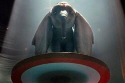 تیم برتون باز میگردد/ «دامبو» روی پرده سینماهای آمریکا و چین