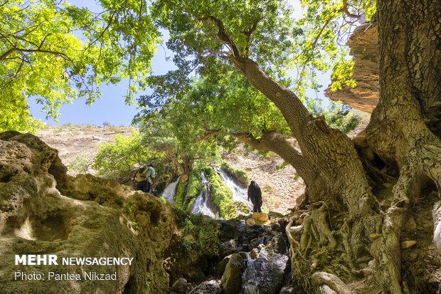 طبیعت پیرامون آبشار آتشگاه لردگان