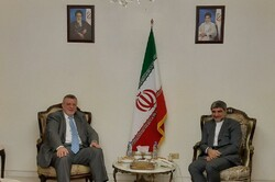 Iran's amb., UN special coordinator for Lebanon meet in Beirut