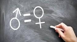 نگاه غرب به زن و مرد بر اساس کارگر و کارفرما است/ وجود نگاه مردانه در فمینیسم