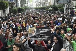 قضاة جزائريون يرفضون الاشراف على الانتخابات الجزائرية