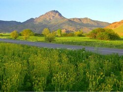 تورهای گردشگری رایگان برای مسافران نوروزی برگزار میشود