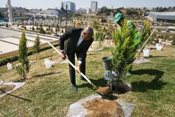 صلح و دوستی درخت لگانے کی تقریب منعقد
