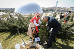 Envoys plant 'peace and friendship' trees in Tehran