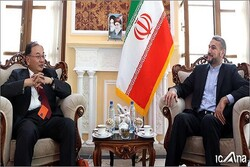 Iranian parl. official hails long-standing, important relations with Japan