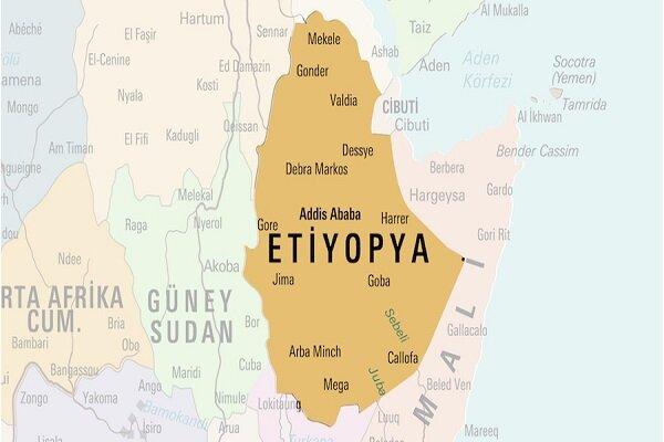 Etiyopya'da 157 kişinin bulunduğu yolcu uçağı düştü