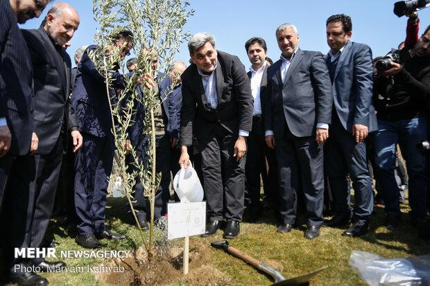 """مراسم غرس شجرة """"السلام والصداقة"""" في طهران"""