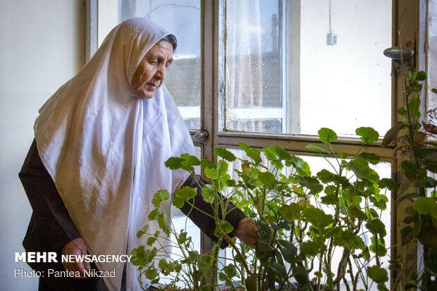 رائحة العيد في بين الجدة