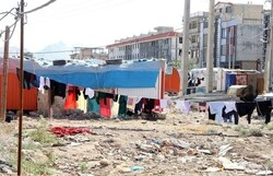 گلایههای زلزلهزدگان سرپلذهابی در دومین عید کانکسنشینی