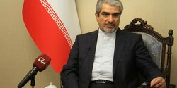 Rouhani likely to visit Syria soon: envoy