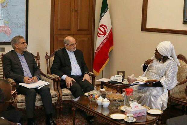African Union calls for more Iran's cooperation in nanotech, ICT