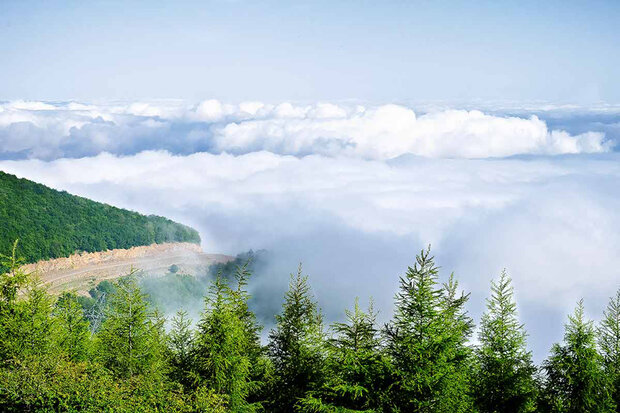 Cloud Forest, a spectacular natural site in Shahrud