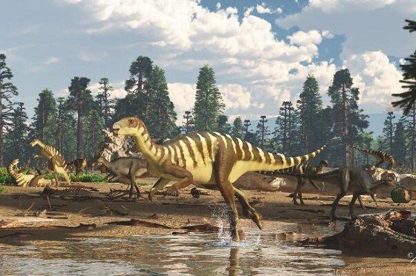 فسیل, دایناسور, استرالیا