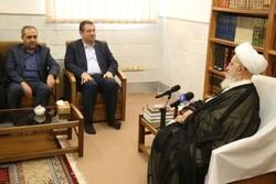 وزیر صنعت با آیت الله مکارم شیرازی دیدار کرد