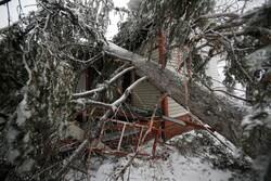 طوفان بمب در آمریکا