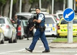 نیوزی لینڈ میں فائرن سے 4 افراد ہلاک