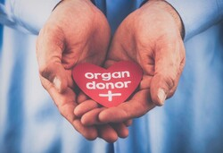 In need of organ transplant: 25,000 lives hanging in the balance