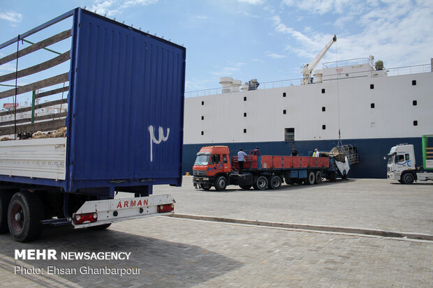 Iran's Chabahar Port unloads first livestock carrier