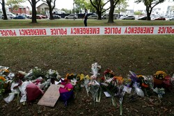 Christchurch carnage must silence the breed of Islam-bashers