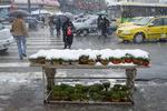 سوق عيد النوروز في اراك تحت الثلوج /صور