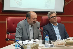 بهداشت و پاکیزگی سرلوحه برنامههای نوروزی در قزوین است