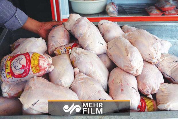 قیمت مرغ هنوز بلاتکلیف