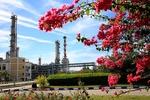 اقتصاد تولید پروپیلن از گاز ومتانول زیرذره بین/توجیه طرح با تخفیف