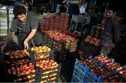 بیش از ۴۰ هزار تن میوه تنظیم بازار عید توزیع شد/ادامه عرضه تا ۱۵ فروردین
