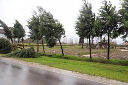 سرعت طوفان عصر امروز تهران ۶۰ به کیلومتر در ساعت رسید