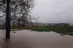 İran'ın  Gülistan eyaletini su bastı