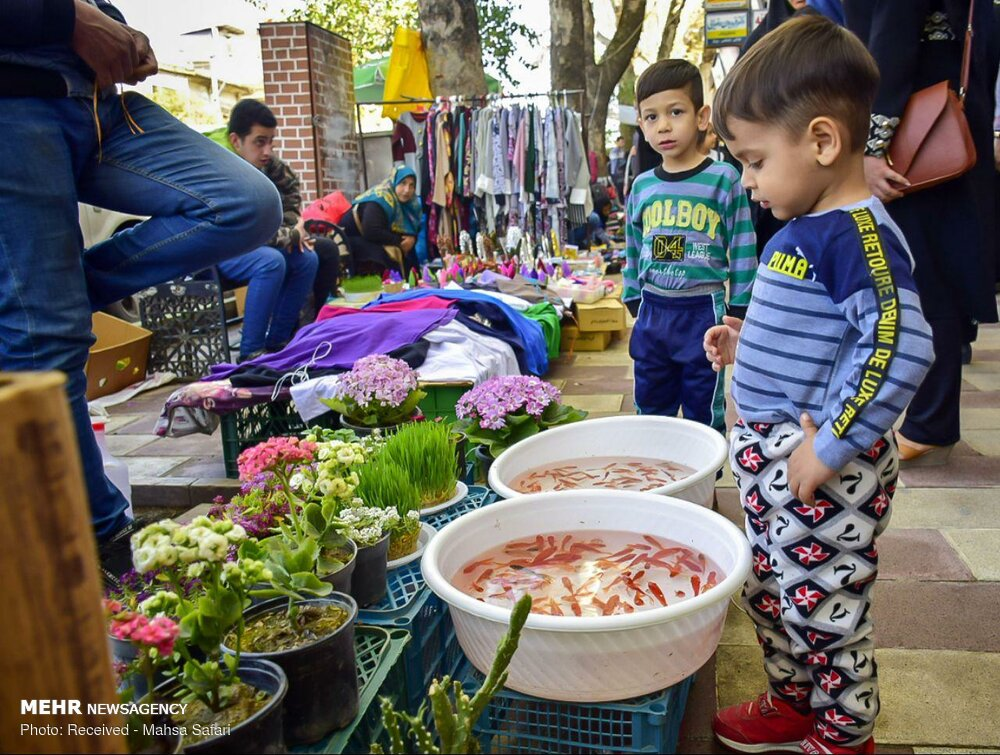 İran'ın kuzeyinde Nevruz havası