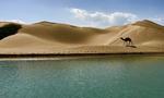 چرا نباید در نوروز به سیستان و بلوچستان برویم؟